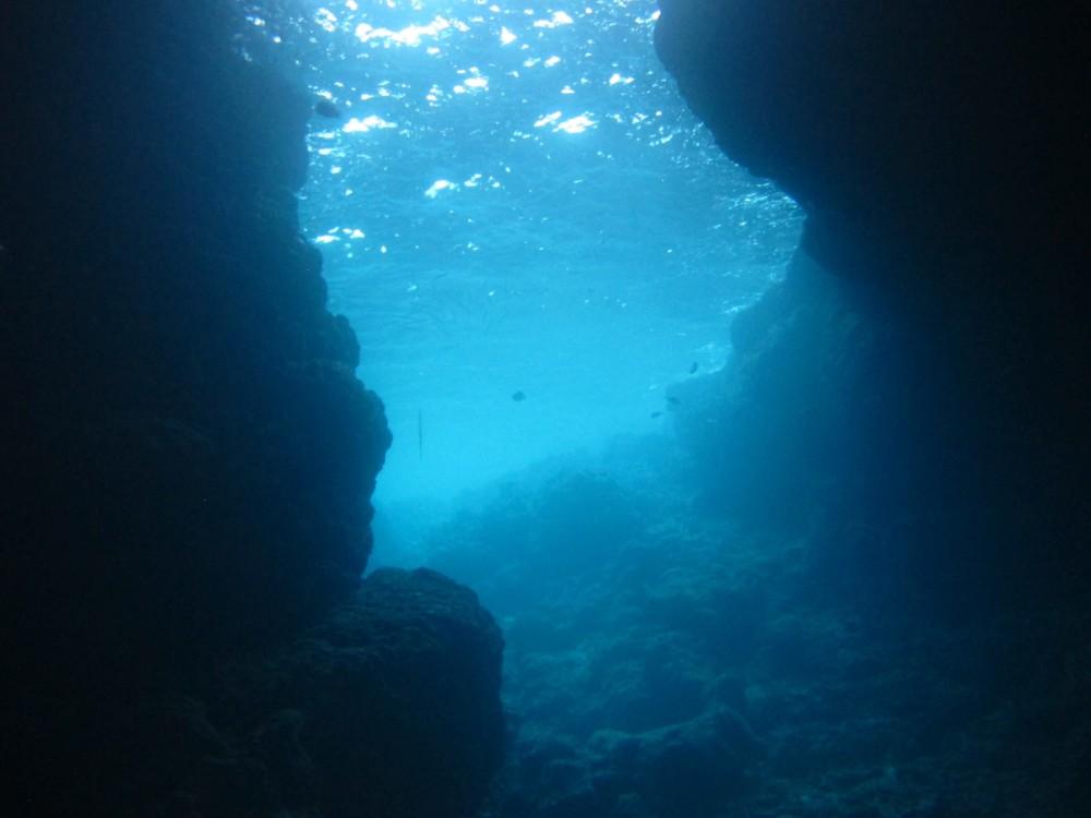 青の洞窟ダイビング (真栄田岬 )