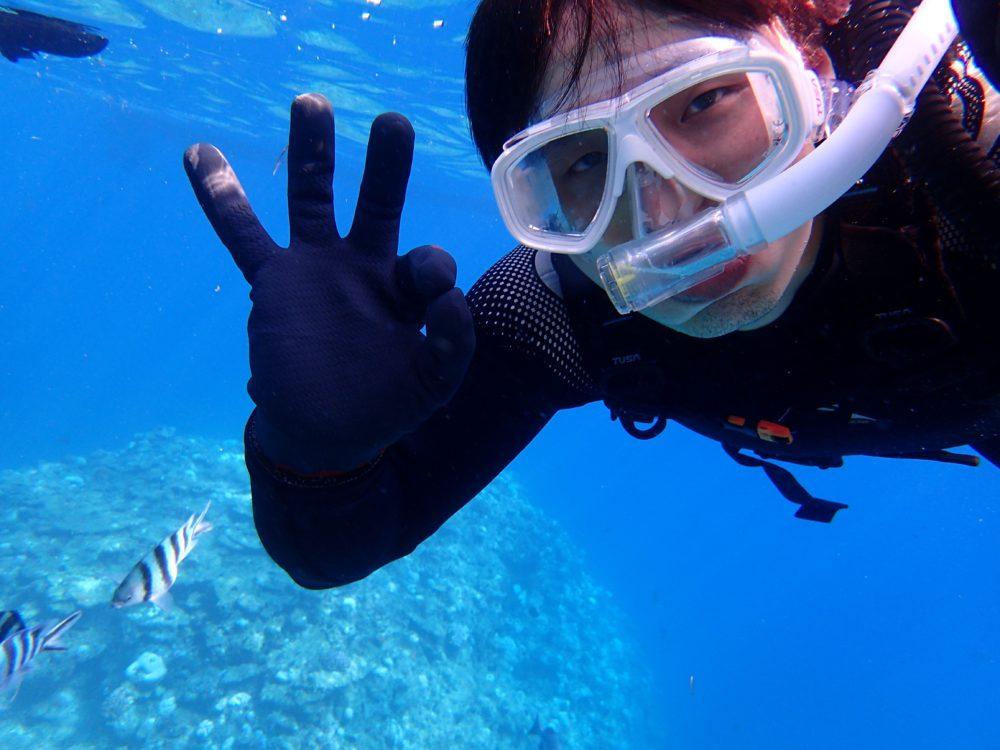 沖縄本島でダイビングライセンス