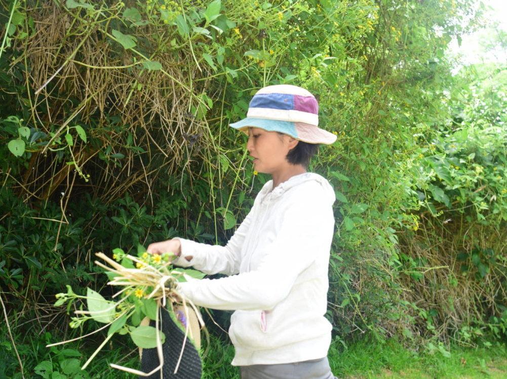 どんな草花アートにするか決まったら作成開始!