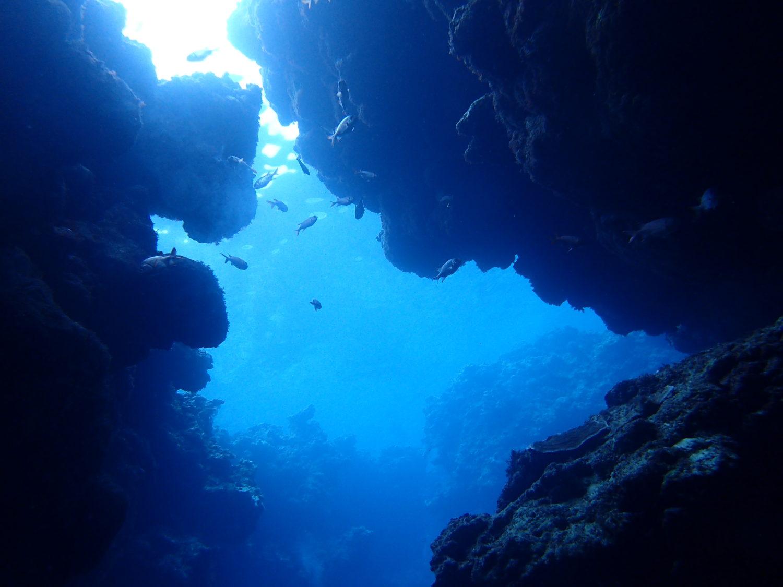 冬だからこそ!美しい青の洞窟