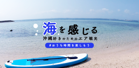 沖縄散歩-エアおきなわ